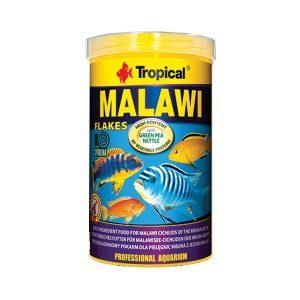 غذای مالاوی تروپیکال